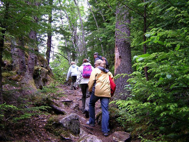 Trekking Group 113