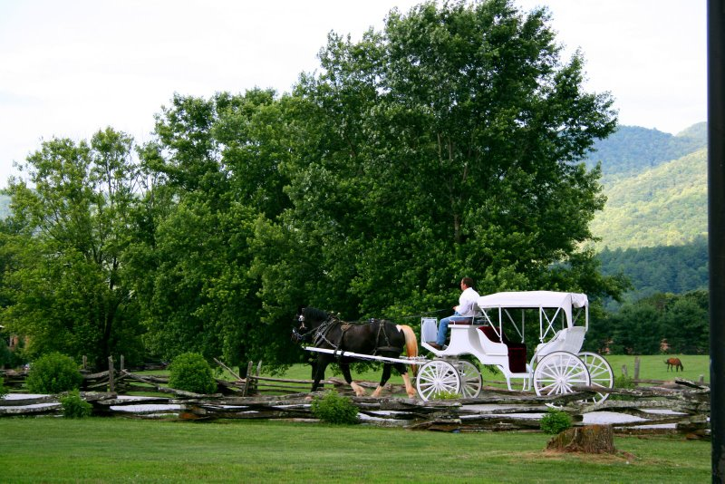 Ride Availible For Weddingsout Door