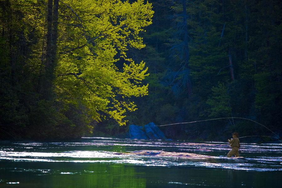 fly fishing in fishing | the dillard house, Fly Fishing Bait