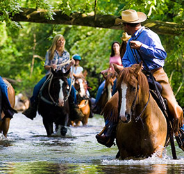 Horseback Riding Package